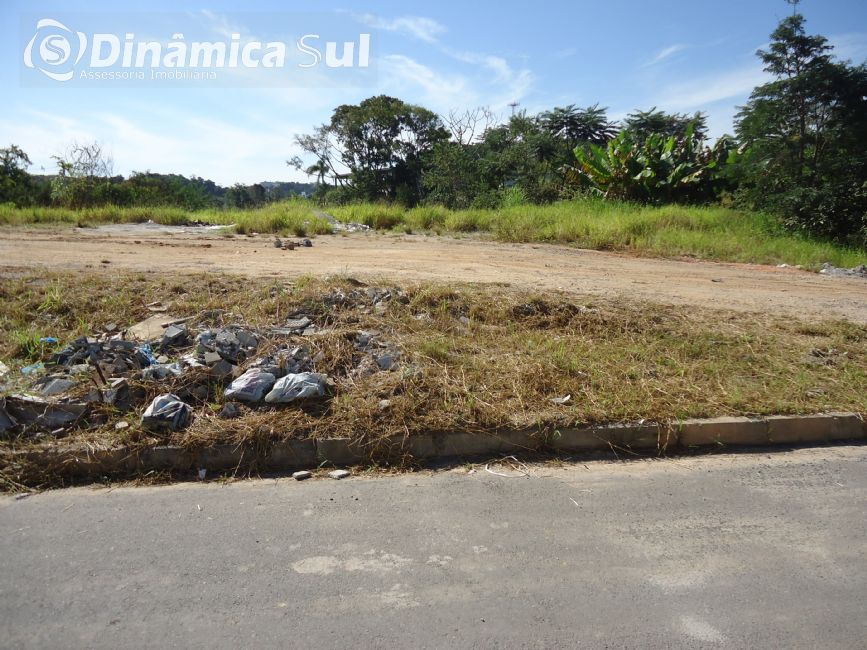 3470450, Terreno, 451.92 m² à venda no bairro Itoupava Norte - Blumenau/SC